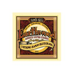 Струны для 5 стр. банджо Earthwood 80, 20 Bronze Bluegrass (9-11-13-20w-9) ERNIE BALL 2063