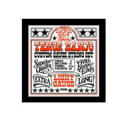 Струны для 4 стр. тенор банджо Stainless Steel Light (9-13-22w-28) ERNIE BALL 2306